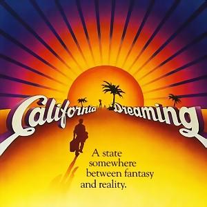 w-kalifornii-zakazane-jest-uzywanie-telefonu-komorkowego-z-gps-w-formie-nawigacji-podczas-prowadzenia-pojazdu