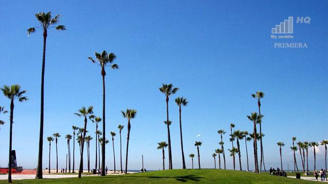 kalifornia-mekka-swiata-it-oraz-mobilnosci